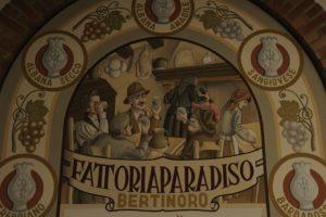 Fattoria Paradiso3