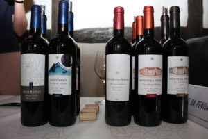 Vine fra Monte de Penha