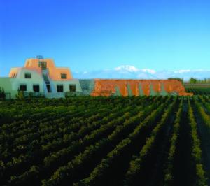 catena-vingaarden1