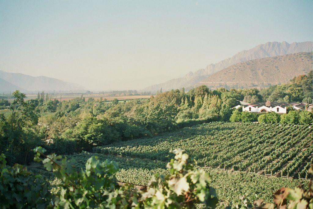 errazuritz-vingaard-m-udsigt