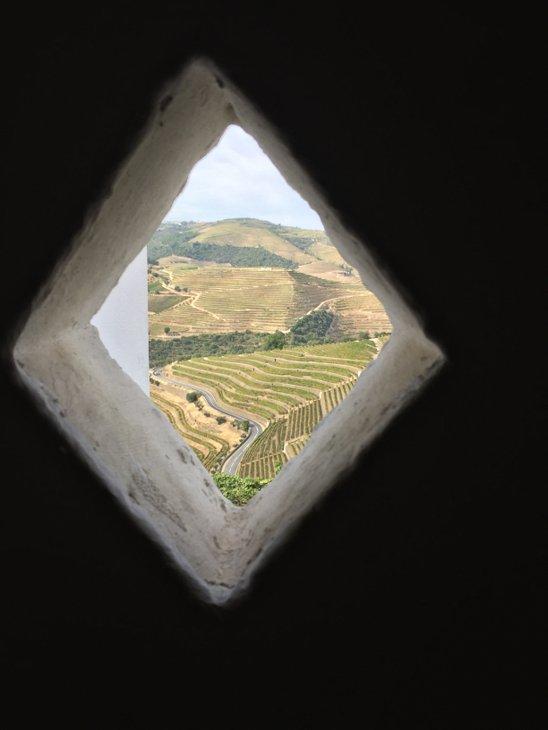 vinmarkerne-set-fra-arbejdernes-toiletskur-man-blive-beruset-af-at-lade-sit-vand